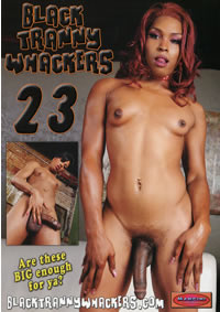 Black Tranny Whackers 23 (disc)