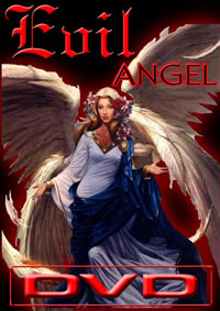 Evil Angel Lex 20 Pc Mix