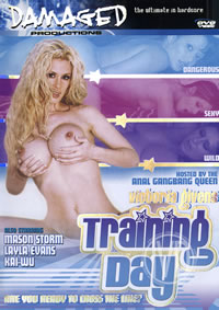 Training Day (disc)
