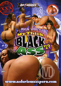 My Thick Black Ass 29 (disc)