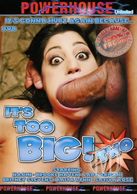 Its Too Big 02