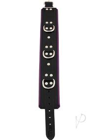 Rouge 3 Ring Padded Collar Black/purple
