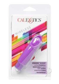 Zinger - Purple