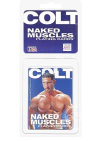 Colt Naked Muscles Cards - Bulk